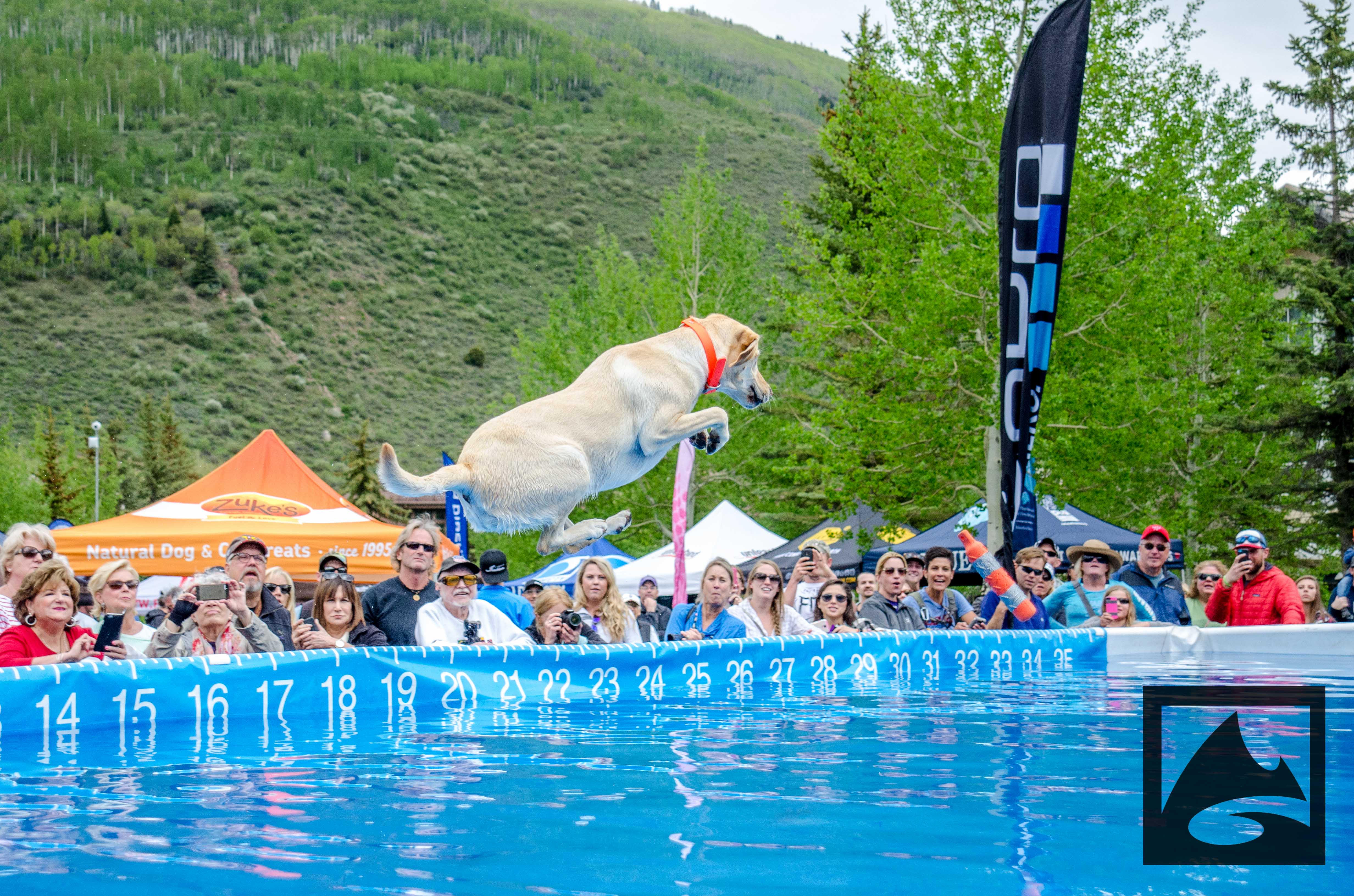 dockdogs-gopro-games-vail
