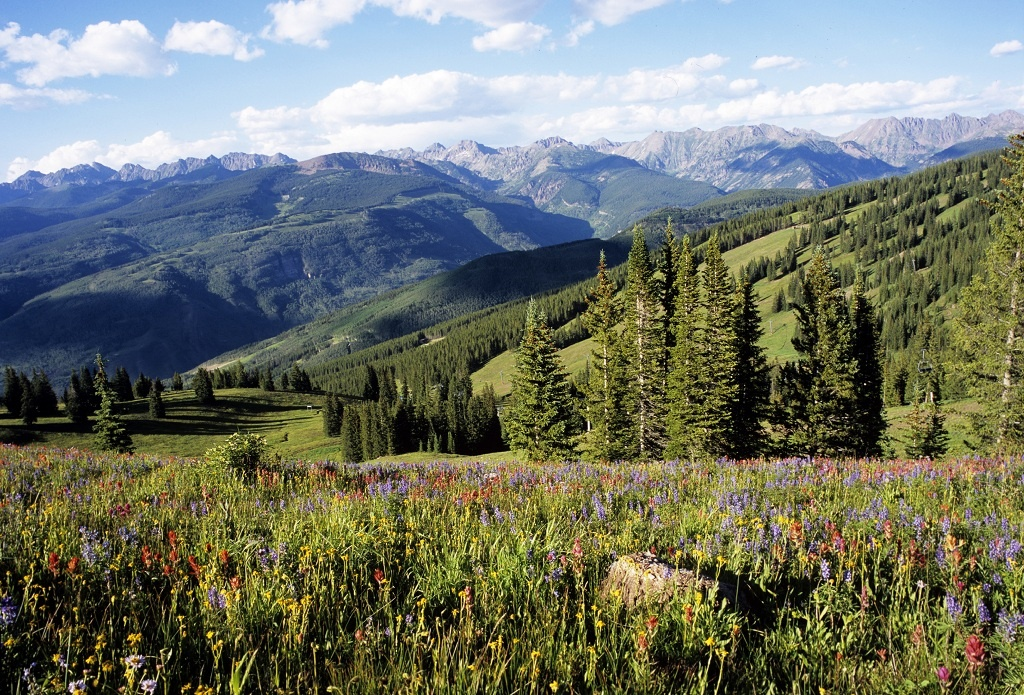 Hiking-Vail-Mountain